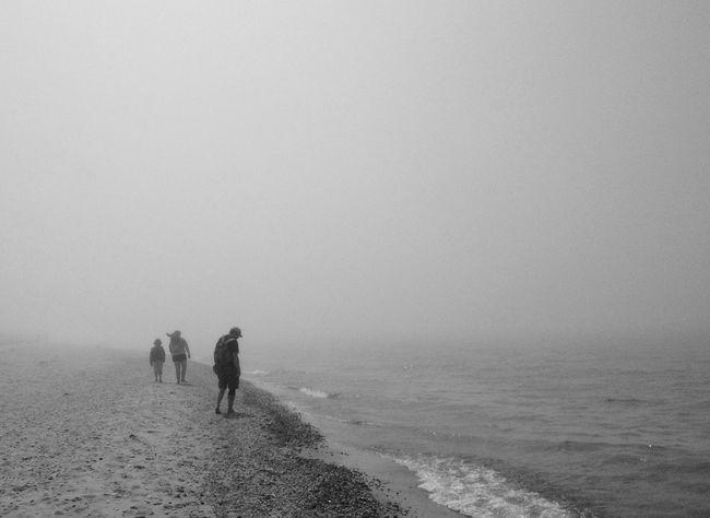 The fog. Different version. IPSExposure VSCO Eye Em Nature Lover EyeEm Best Shots