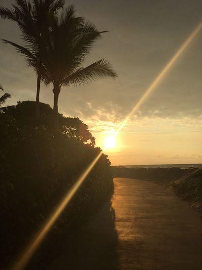 Nothing that's worth while is ever easy. Hello Sun Photography MorningEyeem Helloooooo Morning Sun ❤❤❤