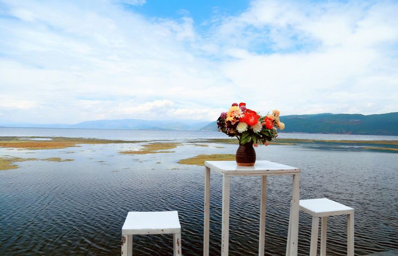 Flower Sky Beauty In Nature Nature Sea Water Vase Cloud - Sky Tranquility No People Table Horizon Over Water Day Tranquil Scene Beach Scenics Outdoors Bouquet Fragility Freshness 洱海