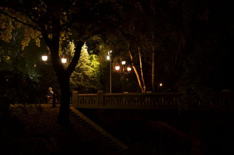 Famous Place Illuminated Mystery Night Street Lights Tourism Trees Vajdahunyad Vár Hungary