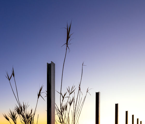 Sky Tranquility No People Geometry Pole Bamboo Sunrise
