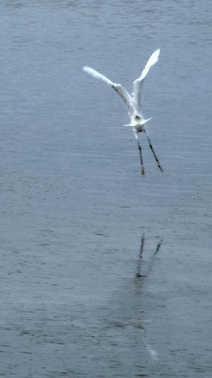 Smartphonephotography Onthemove Saint Cado Morbihan Bretagne France Seaside