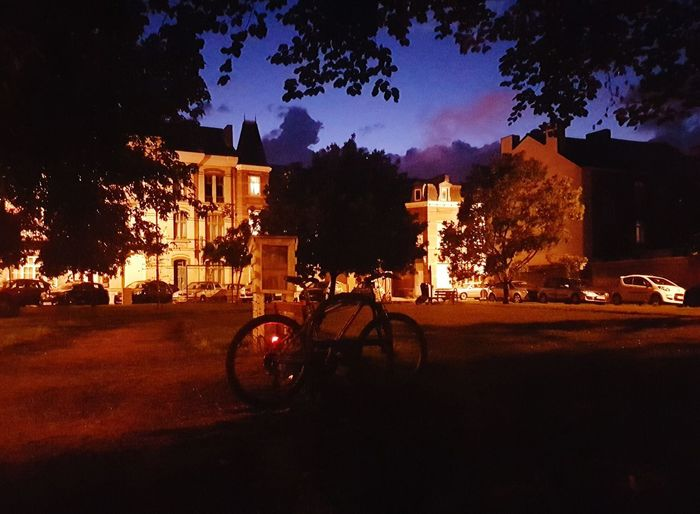 Beauty In Nature Tree_collection  Tree_collection  Night No People Mountain Bike Outdoors Close-up Wheel Photography Is My Escape From Reality! Nightphotography EyeEm Diversity EyeEm Best Shots Night Life 🌛 Low Angle View Photo♡ Transportation Cycling Belgium♡ Illuminated