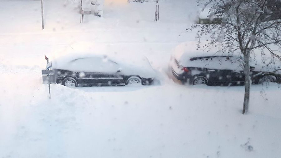 Snow chaos in
