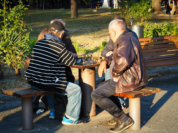 European Cities Belgrade Serbia Eastern Europe Balkans Europe Outdoors Lifestyles Men Adult Real People Sitting Togetherness Casual Clothing Bonding Leisure Activity Playing Chess Public Park Males  Rear View Day Sunlight And Shadow Camaraderie People Friends