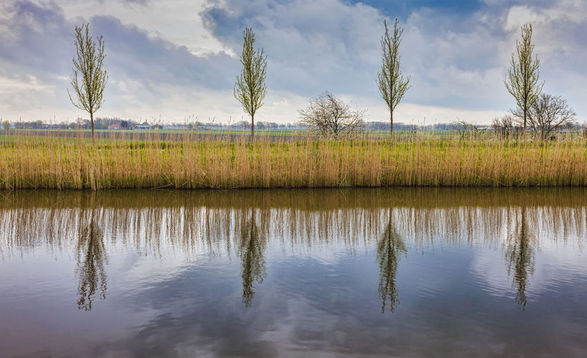 Rural Dutch landscape (polder) with a specific canal in a cloudy day. Plant Reflection Tranquility Water Tree Tranquil Scene Sky Beauty In Nature Scenics - Nature Nature Cloud - Sky Non-urban Scene Waterfront Outdoors Rural Scene Rural Countryside Country Holland Netherlands Polder Polder Landscape Water Reflections Travel Travel Destinations Background Spring Season  Seasonal