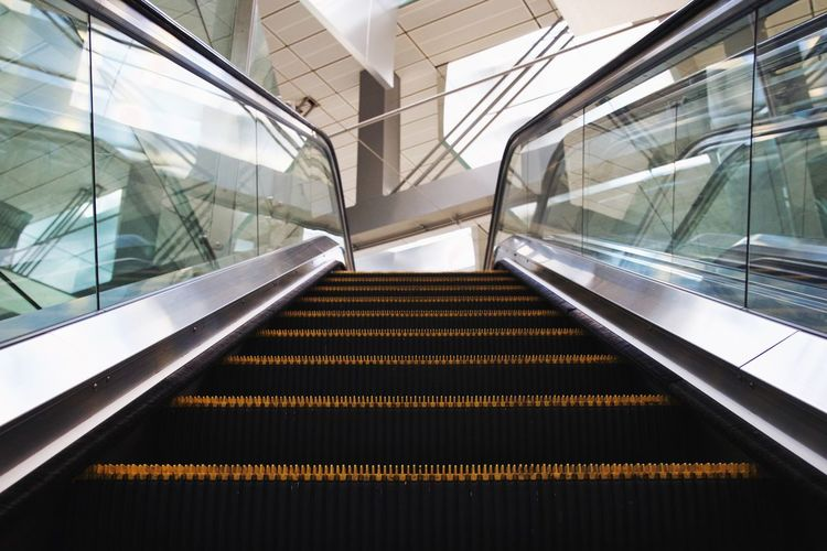 Dog's point of view Architecture Built Structure Convenience Day Escalator Futuristic Hand Rail Illuminated Indoors  Modern No People Public Transportation Railing Reflection Staircase Steps Steps And Staircases Technology The Way Forward Transportation Window
