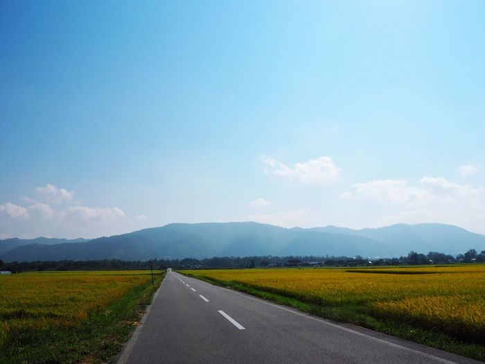 Rice Field Mountain Linear Azumino Japan Japan Photography Nagano Contryside Japanesecountryside Blue Sky