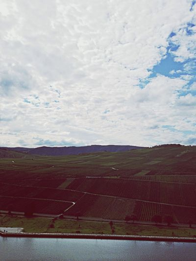 Mosel Wintrich Wineyard Sky And Clouds