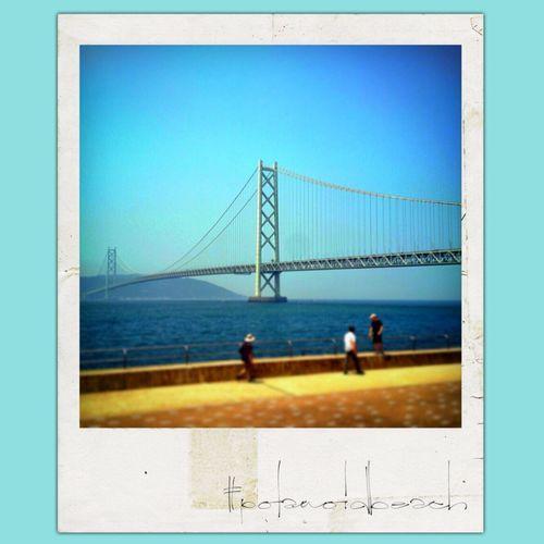 Polaroid Fake Pola IPhoneography Landscape