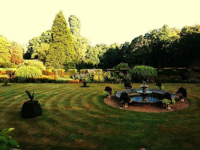 Italian garden First Eyeem Photo