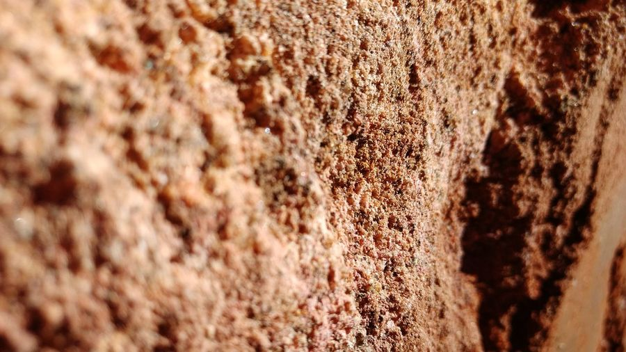 Backgrounds Full Frame Textured  Close-up Selective Focus No People Outdoors Day Nature Creative Texture Macro Ipatinga 3XSPhotographyUnity 3XSPUnity Solo Terrain Earth