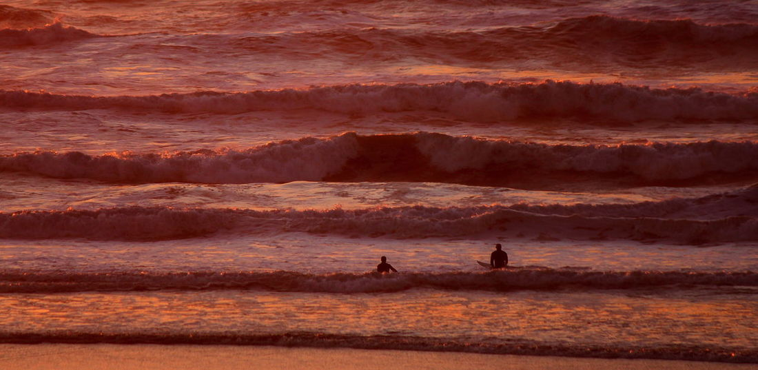 Surfer Sunset - Surfers ride golden sunset swells while waiting for the perfect wave to roll in. Beach Breakers Coastline Dusk Evening Golden Ocean Orange Peaceful Pink Red Relaxing Sea Silhouette Summer Sunset Surf Surfers Surfing Swells Tranquil Travel Vacation Water Waves