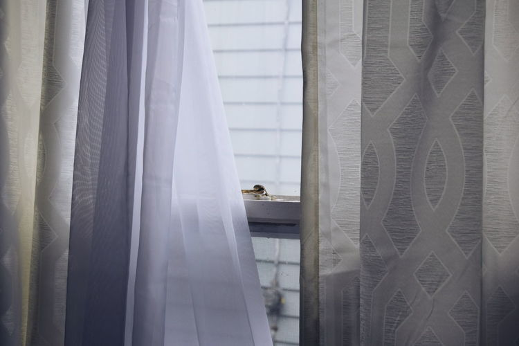 Curtains hanging against window at home