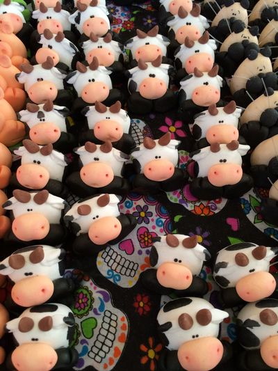 Sweets Cows