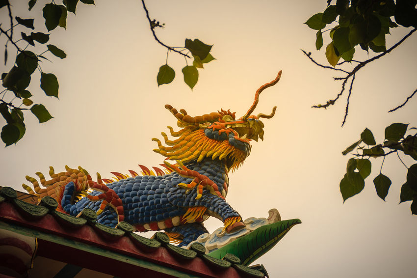 Chinese dragon-headed unicorn statue on the temple roof. Kylin or Kirin on roof in Chinese temple. Chinese Temple Ancient Architecture Chinese Temple Detail Kylin Roof Rooftop Statue Unicorn Unicorn Art Unıcorn Animal Animal Representation Animal Themes Architecture Art And Craft Bird Branch Chinese Dragon Chinese Shrine Chinese Temple Chinese Temple Decoration Chinese Temples Creativity Dragon-headed Dragon-headed Unicorn Kirin Kyline Leaf Low Angle View Nature No People Outdoors Plant Plant Part Representation Roof Roof Tile Rooftop View  Rooftops Sky Temple Roof Temple Roof Tile Tree Unicorns Vertebrate