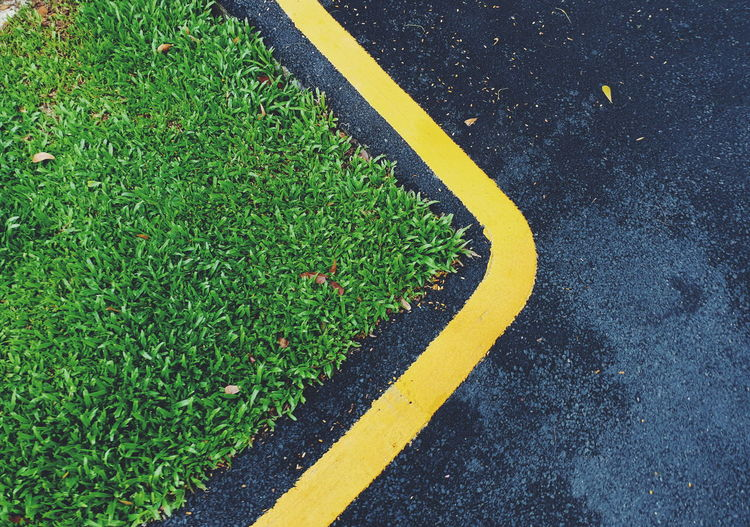 Backgrounds Floor Street Yellow Asphalt Road High Angle View Grass Green Color LINE Road Marking Yellow Line Marking Roadways