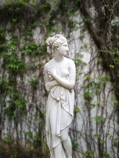 Sevilla Spain Miarma Palacio De Dueñas Modern Hospitality Tree Beauty Statue Sculpture Spirituality Religion Females Stone Material Angel Female Likeness Mannequin Human Representation Sculpted