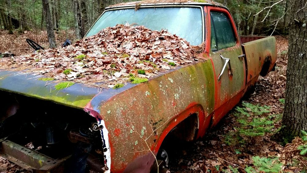 Truck Time Back To Nature Fallen Leaves Forgotten Nature Taking Over Decay Rust Moss Return To Nature
