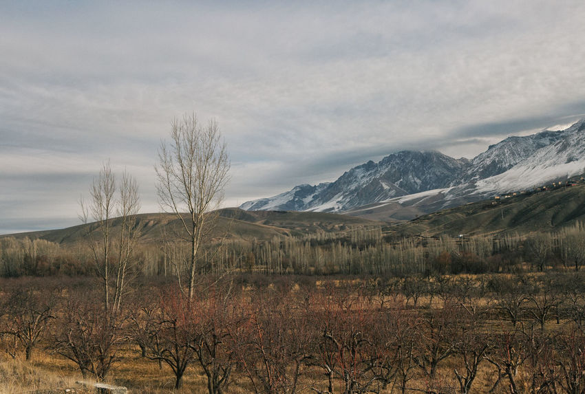 Snow Tops Aladağlar Beauty In Nature Cloudy Day Landscape Mountain Mountains Mountains And Sky Nature Niğde No People Outdoors Scenics Sky Snow Snow Topped Mountains Tranquility Trees Trees And Sky Turkey Türkiye