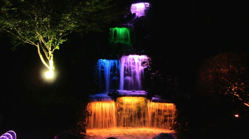 Colorsplash Waterfall and Illumination during the Festivaloflights in Pukekura Park and Brooklands, New Plymouth , New Zealand