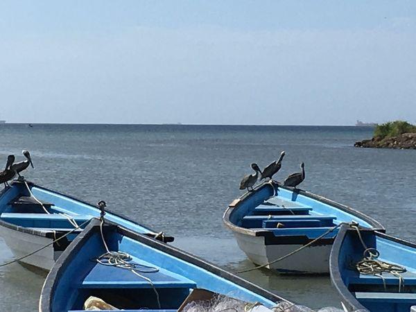 Fisherman pier Claxton Bay Trinidad Hello World Taking Photos Enjoying Life Trinidad And Tobago