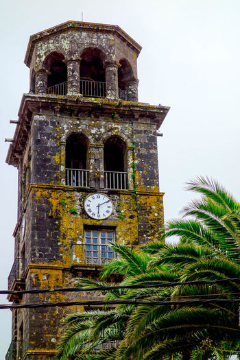 Architecture Archival Bell Bell Tower - Tower Building Exterior Church City Citylife Clock Clock Face Clock Tower ExploreEverything Going For A Walk History La Laguna Low Angle View Old Town Palm Trees Santa Cruz De Tenerife SPAIN Tenerife Tenerife Island Time Tower Wanderlust