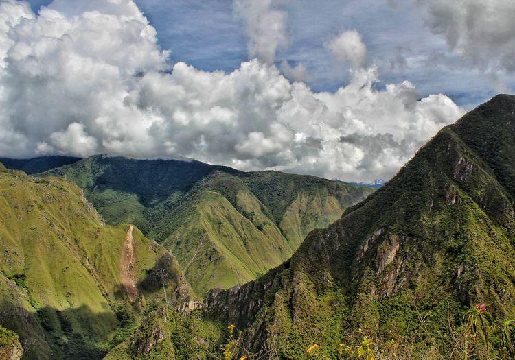 Andean landscape. Partener Selection Tree Tea Crop Terraced Field Mountain Rural Scene Agriculture Field Sky Landscape Cloud - Sky