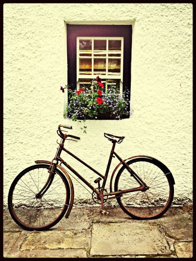 Window Bycicle Flowers Countryside