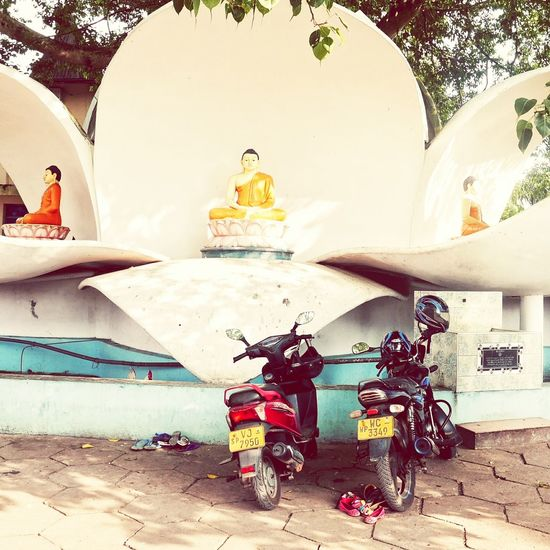 Travel Photography Sri Lanka Outdoors Hidden Places Srilanka Photography Sri_lanka Urban Romantics Buddha Buddha Statue No People Motorcycles Two Of A Kind Urban Exploration Urban Poetry Three Is A Magic Number Theworldneedsmorecolors Flowers 🌸🌸🌸 Buddhism Culture Parking Area Travelling Photography Travelphotography