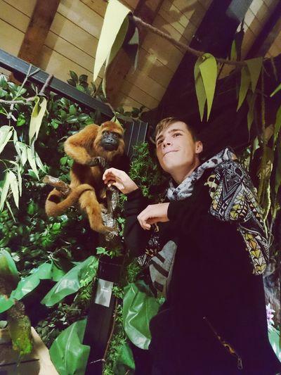 Luksemburg My Boyfriend ❤ And Monkey :-D :-D 😁😁😁💜💜💜😘😍😍😍