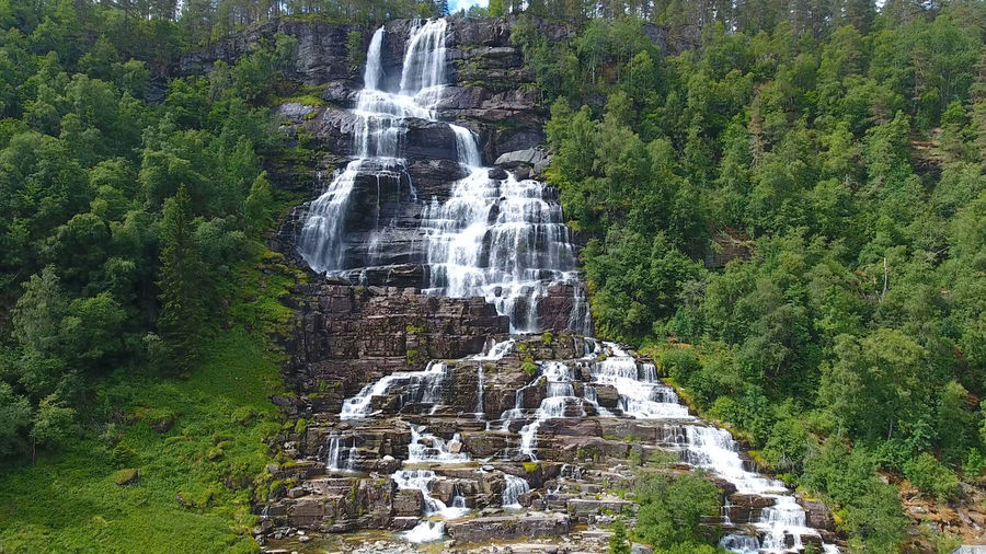 Norway Scandinavia Tvindefossen Beauty In Nature Blurred Motion Day Environment Flowing Flowing Water Forest Green Color Growth Land Long Exposure Motion Nature No People Outdoors Plant Power In Nature Rainforest Rock Scenics - Nature Tree Water Waterfall