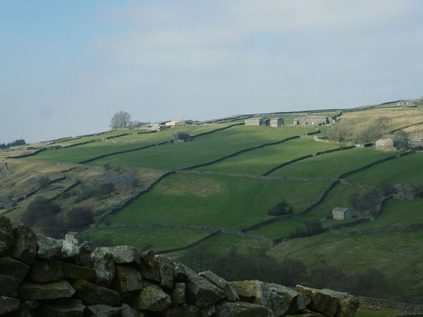 Agriculture Rural Scene Landscape Farmland Farmhouse Outdoors Drystonewalls No People Vast Landscape Beauty In Nature Peace And Quiet Yorkshire Dales Uk Simple Quiet Love