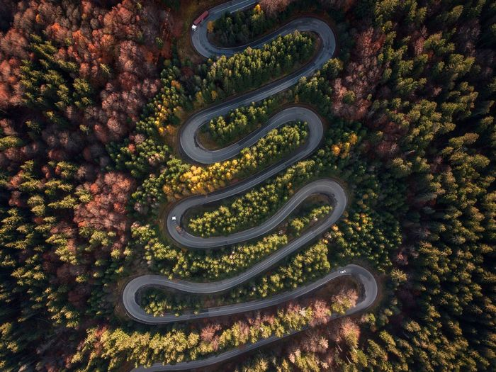 Aerial view of amazing curved road trough the colorful autumn forest. travel, transportation concept