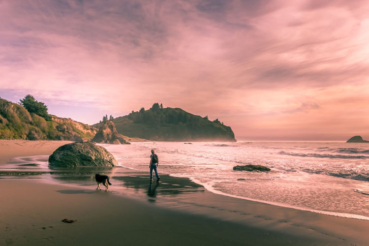 Scenic view of sea and a person walking a dog against sky during sunset in california