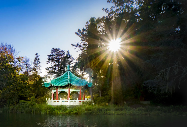 horizontal Beauty In Nature Clear Sky Day Lake Lens Flare Nature No People Outdoors Sky Sunlight Tree Water