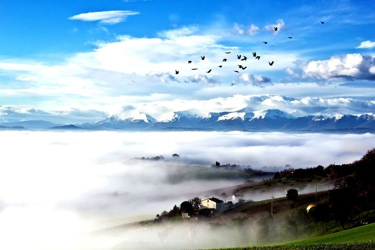 Scenic view of fog over village