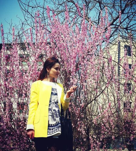 Spring Blooming Tree China Hebei Province People Girls Warm Day Street Fashion
