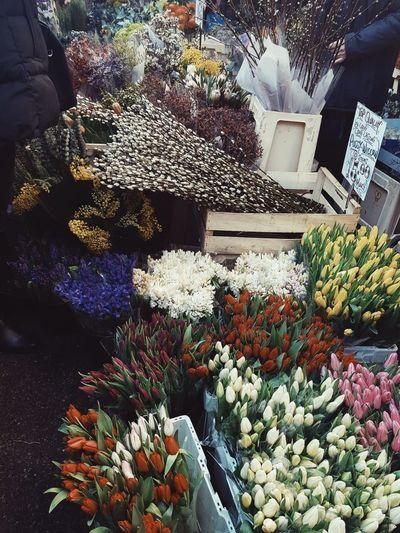 For Sale Flower