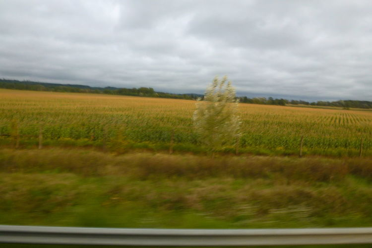 Taken Through A Moving Bus Window Travel From Zagreb,Croatia To Budapest