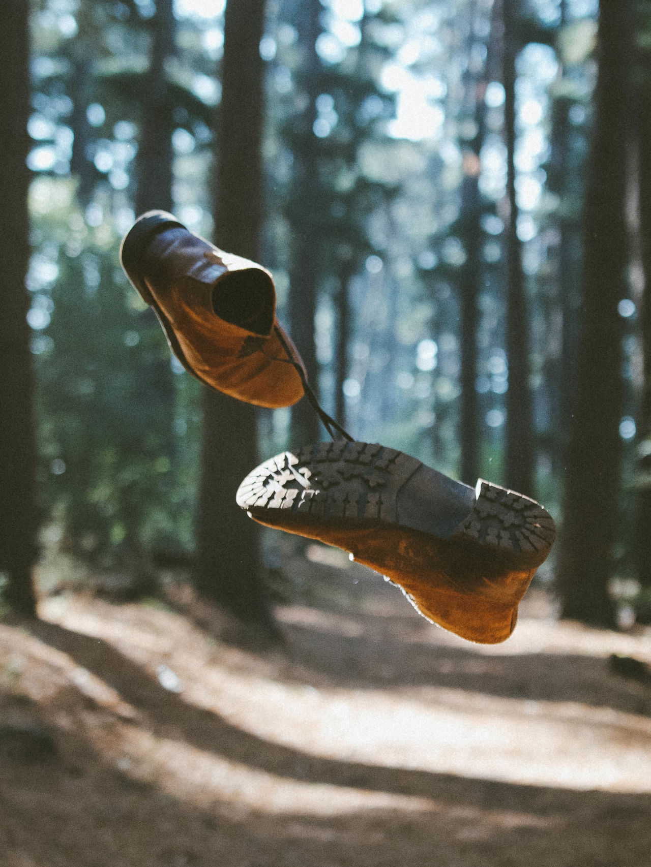 Shoes in mid-air against trees