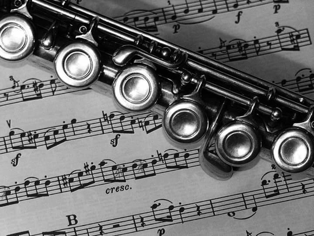 music, musical instrument, arts culture and entertainment, trumpet, high angle view, wind instrument, indoors, classical music, no people, close-up, musical note, day, jazz music