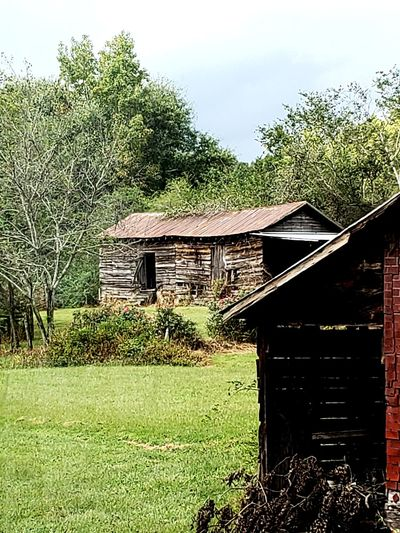 Cotton Seed House Old Buildings Ranch House Plantation South Antebellum Tree House Architecture Grass Building Exterior Sky Built Structure Green Color Growing Farmland Agricultural Field