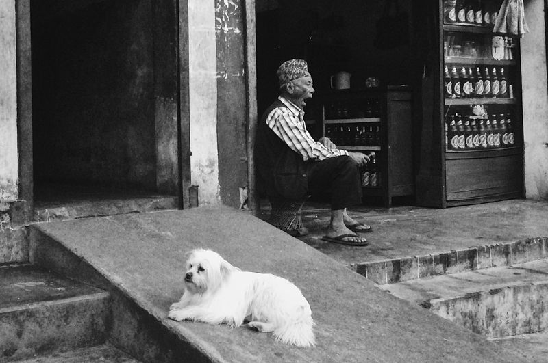 Man with dog sitting on steps