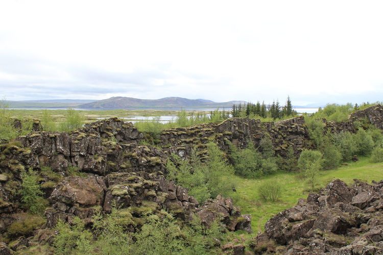 Iceland Beauty In Nature Cloud - Sky Day Environment Green Color History Land Landscape Mountain Nature No People Non-urban Scene Outdoors Pingvellir Plant Rock Rock - Object Scenics - Nature Sky Solid Tectonic Tranquil Scene Tranquility
