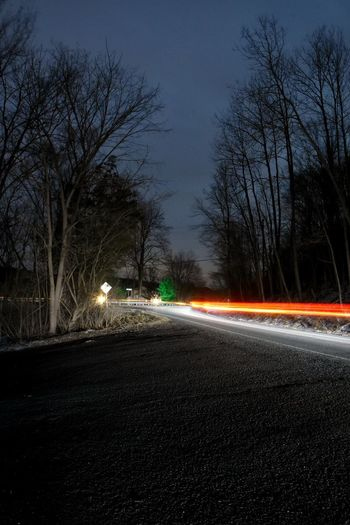 Driving Nightphotography Road Street At Night Bare Tree Blurred Motion Illuminated Light Trail Long Exposure Long Exposure Night Photography Motion Night No People Road