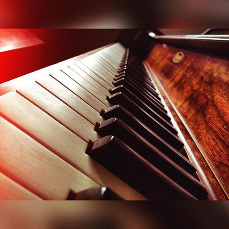 """""""Music is moral law. It gives soul to the universe, wings to the mind, flight to the imagination, and charm and gaiety to life and to everything."""" -Plato Music Healing Piano"""