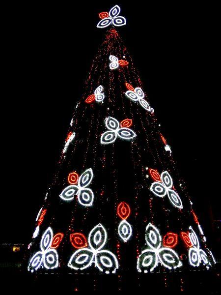 Christmas Celebration Christmas Decoration Christmas Tree Tradition Tree Topper Tree Christmas Ornament Red Christmas Lights No People Celebration Event Night Religion Liight Up Your Life Christmas Illuminated Outdoors