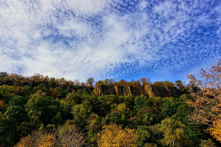 Early Fall at George Washington Bridge Park Plant Mountain Outdoors Low Angle View Landscape Tranquil Scene Cloud - Sky No People Scenics Tranquility Sky Beauty In Nature Tree Nature Fall Early Fall Cliff Edge Cliff View EyeEm Nature Lover EyeEmNewHere
