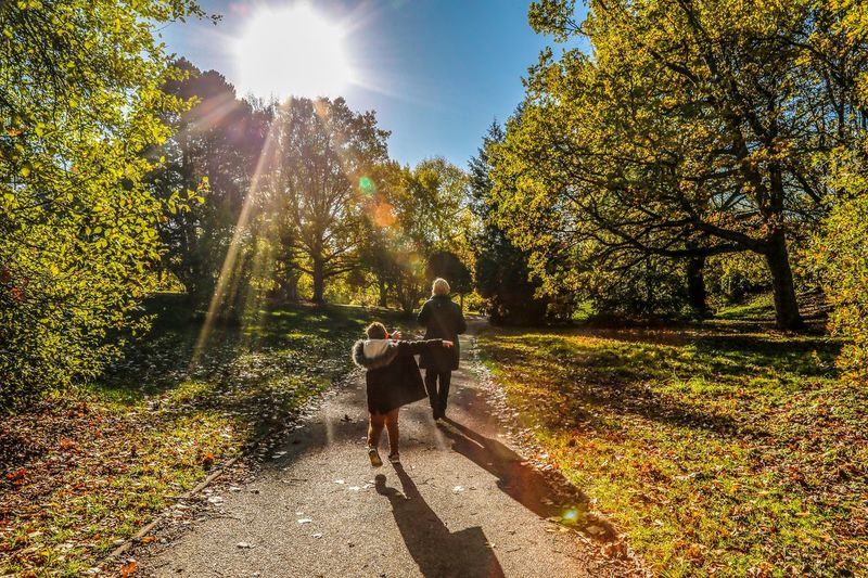 Dancing in the woods Blue Hop Exited  Happy Dab DAP Fortnite Dance Mom Oarent Sunlight Tree Nature Real People Plant Shadow Men People Childhood Beauty In Nature Day Sunbeam Lifestyles Growth Lens Flare Sky Leisure Activity Full Length Child Two People My Best Photo